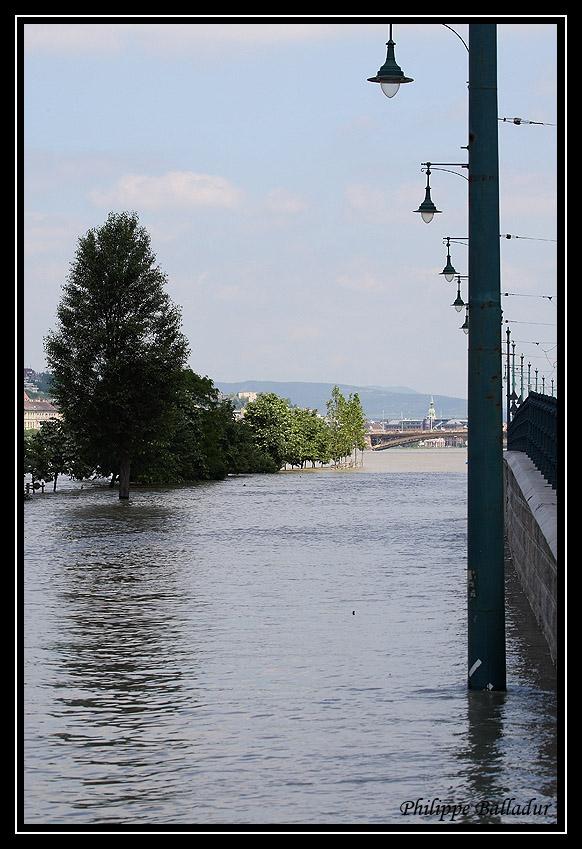Qui l'eut cru(e) Crue_Duna_Budapest_06